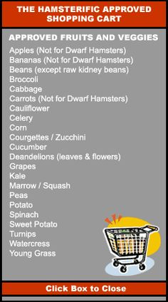 This list shows the right vegetables to feed hamsters.