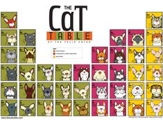 The Cat Table of the Felis Catus features 40 cat pedigree breeds recognized by The Cat Fanciers Association in the Championship Class.