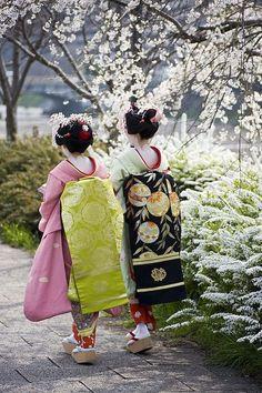 Maiko girls. Kyoto, Japan.