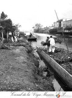 Fotos de Ciudad de México, Distrito Federal, México: Cargadoeres en el Canal de la Viga