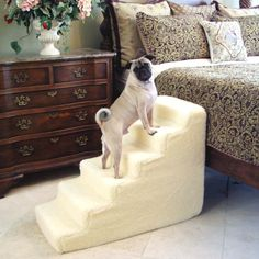 If you are looking for pet steps for bed, or pet stairs for anywhere your furry friend needs help accessing, Handicapped Pets has them! Find your foam pet steps here! Pet Steps For Bed, Dog Stairs For Bed, Cat Stairs, Dog Steps, House Stairs, Pet Ramp, Pet Gear, Dog Houses, Diy Stuffed Animals