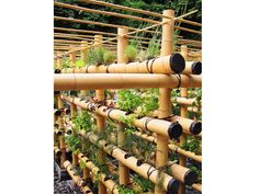 The Babylon Urban Garden Made Out of Bamboo