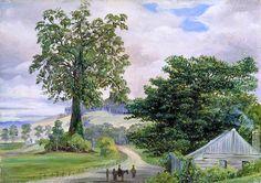 Marianne North - Fig-Tree Village and Its Big Godfather, Illawarra  circa 1880-1883