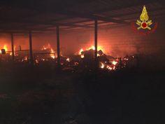 Incendio in una azienda agricola a Rocca di Neto, salvate 750 pecore dai Vigili del Fuoco - Questa notte, alle ore 1.00 circa, una squadra dei vigili del fuoco di Crotone, è intervenuta nel Comune di Rocca di Neto, per un incendio che ha coinvolto una azienda agricola  - http://www.ilcirotano.it/2017/07/05/incendio-in-una-azienda-agricola-a-rocca-di-neto-salvate-750-pecore-dai-vigili-del-fuoco/