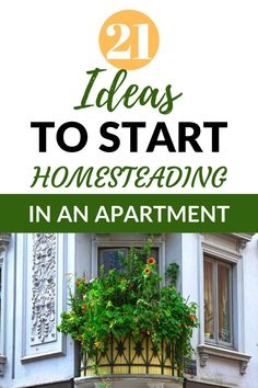 Are you stuck living in an apartment? Do you yearn for the homesteading lifestyl. Are you stuck living in an apartment? Do you yearn for the homesteading lifestyle? Stop dreaming an Homestead Survival, Survival Prepping, Survival Gear, Survival Skills, Survival Shelter, Survival Quotes, Emergency Preparedness, Growing Herbs, Growing Vegetables