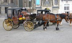 Horse Drawn Carriage outside Palace