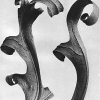 Karl Blossfeldt - Offline, the gallery will offer first edition copies of Blossfeldt's celebrated books Wunder In Der Natur, 1932 and Urformen Der Kunst, 1928 Karl Blossfeldt, Natural Form Art, Berlin, Vintage Compass, Nature Artists, Photo D Art, Wallpaper Magazine, Antique Prints, Botanical Art