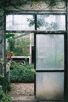 Tiles over the greenhouse door