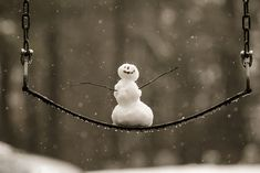 Happy Snowman! #12DaysofFlickr by Photography by Chris Howard, via Flickr