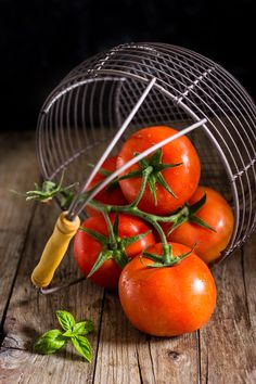 corsi foodphotography italia Dazzero Moni Qu Photography