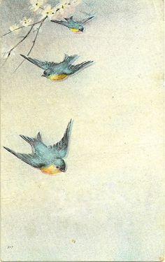 Vintage Bluebirds Journaling Card ~ PJH Designs Free Graphics