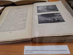 Dugmore, Arthur Radclyffe. Les Fauves d'Africa.- Paris: Librairie Hachette, (1910).- 267 p. ; 25 cm. Feb19-May19 Mamiferos I. Conte, Paris, Books, Vertebrates, Exhibitions, Big Cats, Libros, Book, Book Illustrations