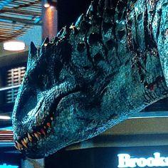 "Skinny Devil Lord 😈🍷 on Instagram: ""#jurassicworld #indominusrex"" Jurassic World Fallen Kingdom, Jurassic Park World, American Lion, Ground Sloth, Feathered Dinosaurs, J Park, Indominus Rex, Dire Wolf, Spinosaurus"