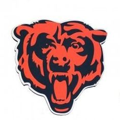Project 1 Favorite Sports Teams Pinterest Bears