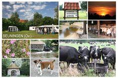 """Kampeerboerderij """"Damhuis"""", Beuningen"""