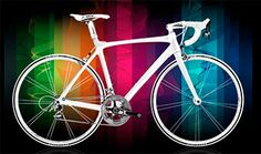 Paradise Bicycles - Cape Coral Fort Myers - Trek Gary Fisher Mirraco Scott