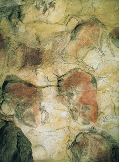Bison, detail of a painted ceiling in the Altamira cave, Santander, Spain ca. 12,000-11,000 BCE