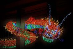 Luci d'Artista 2012-2013 #Salerno #Christmas #lights #dragon
