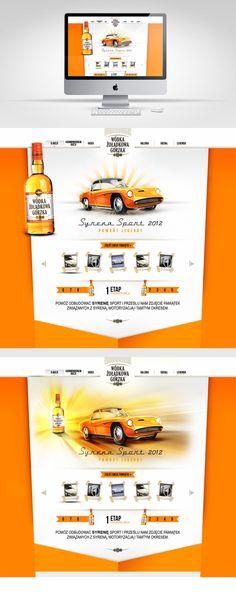 car drink vodka whisky alcohol orange simple minimal website web design