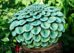 fleur ceramique - Recherche Google