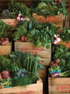 Image Courtesy Of One Straw Farm