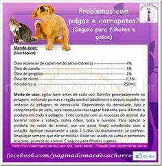 A veterinária Sylvia Angélico, do site Cachorro Verde, traduziu uma receita natural contra pulgas e carrapatos postada pela veterinária Karen Becker. Testada