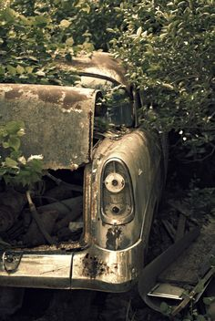 Old rusty car - photography  https://www.facebook.com/pages/Wild-Orchid-Photography/138906046161355?ref=hl