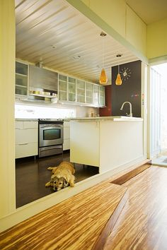 kitchen in container home via moduluxe.net