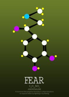 The chemical composition of fear