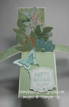 03/12/2014 Stampin with Diane:   Card in a Box