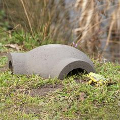 Nest Boxes & Wildlife Houses : Frog & Toad Provide a safe refuge for frogs and toads with this robust shelter made from a mix of wood and concrete. It's likely to be used throughout the year, but will be especially valuable as a winter hibernation site. Frog House, Toad House, Frog Habitat, Whites Tree Frog, Outdoor Ponds, Garden Frogs, Insect Hotel, Wild Bird Food, Frog And Toad