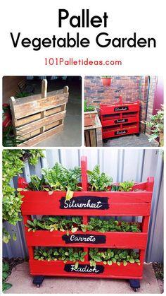 DIY Vertical Pallet Vegetable Garden on Wheels - 101 Pallet ideas
