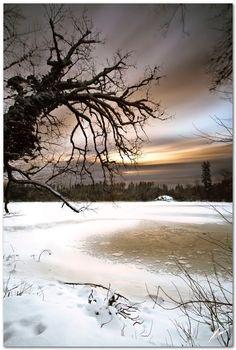 Winter morning at bergsee | par chris frick.