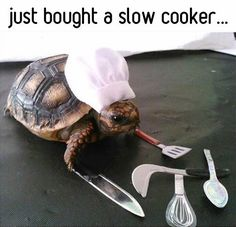 No, not a recipe and certainly not food, but we can all use a little humor now and then and smiles are always recommended =)