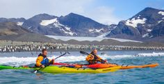 Inside the record-breaking, sea kayak circumnavigation of South Georgia Island with a hardy four-man crew of Aussies, average age: South Georgia Island, Boater, Antarctica, Kayaking, Mount Everest, Mountains, Penguins, Travel, Kayaks