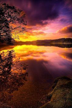 (Sunrise at Loch Ard in Loch Lomond and Trossachs National Park, Scotland