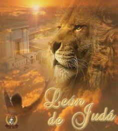 Resultado de imagen para leon de juda