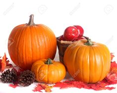 pumpkins, apples, pinecones, leaves