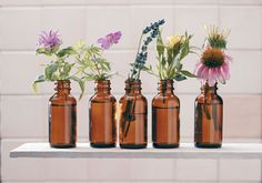 healthy herbal tinctures are easy to make at home- a great article about using fresh vs. dried herbs and the appropriate vodka/ethanol for different types of herbs