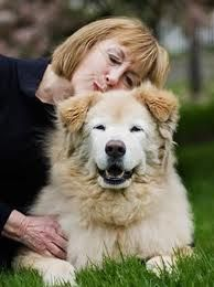Health Benefits of Pets for Seniors in West Tennessee