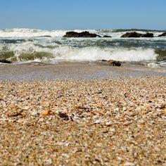 Shell grit on Palm Beach #kzn #kwazulunatal #southcoastkzn #kznsouthcoast #palmbeach #shellgrit #waves #beach 🐚🏖️🌊 Palm Beach, Coast, Water, Outdoor, Instagram, Gripe Water, Outdoors, Outdoor Games, Aqua