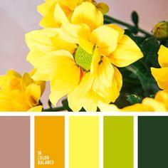 amarillo azafranado, amarillo vivo, amarillo y verde, anaranjado, anaranjado y verde, de color verde lechuga, rojo, verde lechuga y anaranjado, verde oscuro, verde y amarillo, verde y rojo.