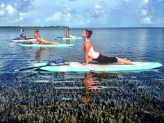 Relax.... Paddle board yoga in Key West....I'd be in the water in seconds! @leburns2009 @amandaruth19