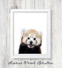 Panda Bear Print Red Panda Nursery Decor Kids Room Poster