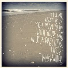 mary oliver by lydia