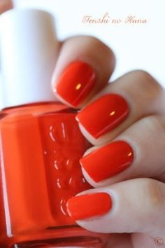 56 #Orange Things to Prove It's an Outstanding Color ...