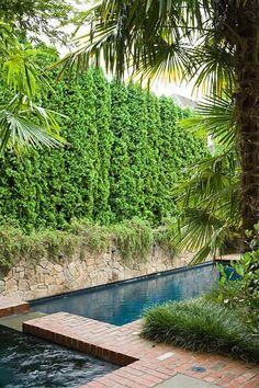 The living wall adds privacy for a swim.  Photo: John Granen
