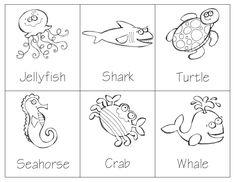 Sea Animal Montessori 3-Part Cards