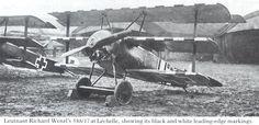 Leutnant Richard Wenzl's Fokker Dr.I 588/17 showing its black and white leading -edge markings