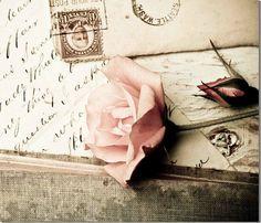 Vintage Roos Fotografie♡  -Mooix-